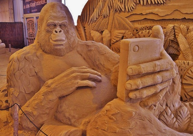 https://pixabay.com/en/sand-sculpture-monkey-selfi-gorilla-774467/