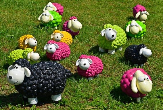 sheep-1437618_640